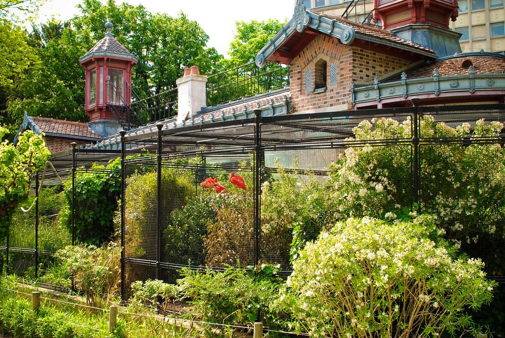 la voli re de la m nagerie du jardin des plantes paris 5 m flickr. Black Bedroom Furniture Sets. Home Design Ideas