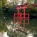 torii, japanese hill-and-pond garden