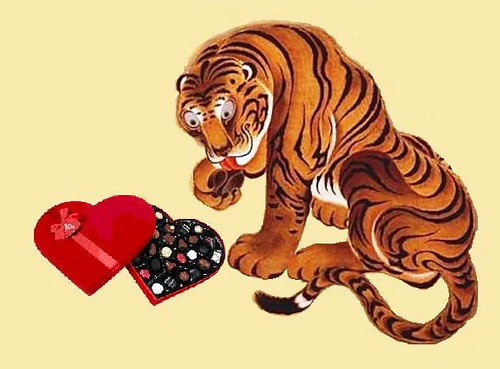 valentine u0026 39 s day  year of the tiger