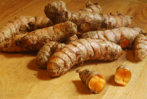 fresh turmeric root | by h-bomb
