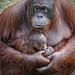 Wattana with her babyboy Kawan