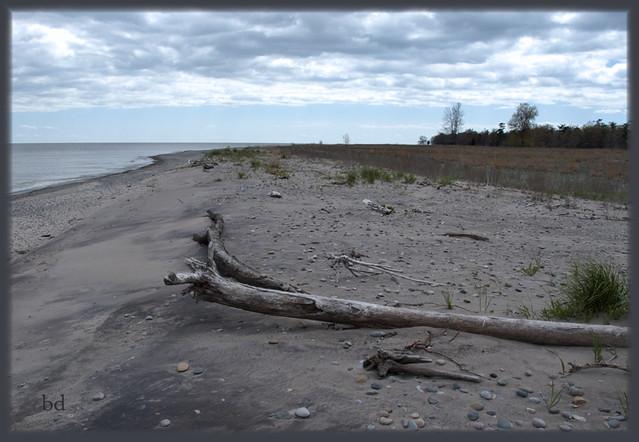 lake erie beach rondeau provincial park hdr homework. Black Bedroom Furniture Sets. Home Design Ideas