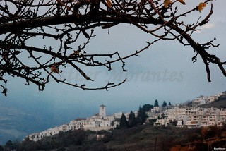 Image00155 [50%] | by laalhambragranada