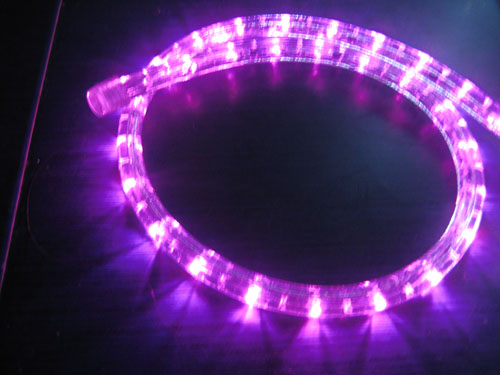 Purple of led rope light our factory is main producing led flickr purple of led rope light by cathleen 2010 aloadofball Choice Image