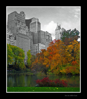 Central Park, the Nature´s colours | by Asi75er