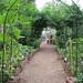 Discovery Garden farm