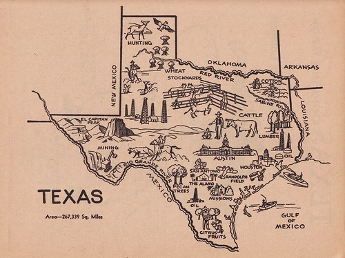 Lone Star State Map I Can T Pass Up Icon Maps I Just
