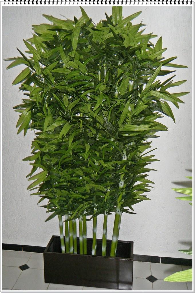 ARREGLO JARDINERA VARAS BAMBU X 10 | DecorKLASS -plantas ...