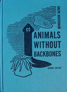 Animals without Backbones | by Crossett Library Bennington College