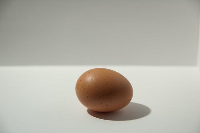 Egg as food