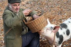 truffle hunter and his pig | by David Lebovitz