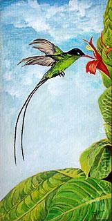 dr bird swallow tail hummingbird restaurant paintings flickr. Black Bedroom Furniture Sets. Home Design Ideas