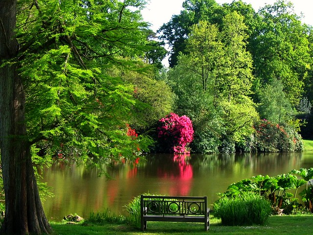 Sheffield park a national trust garden in east sussex for Paesaggi di primavera per desktop