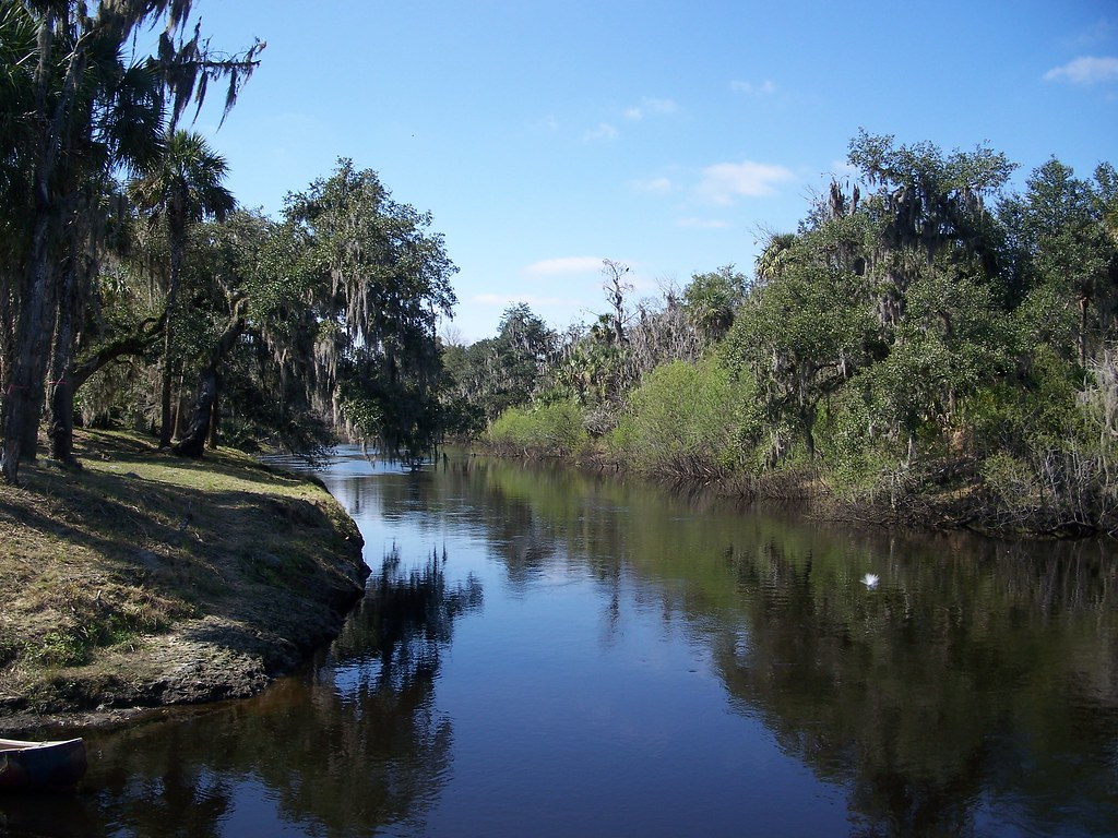 Get Free Credit Report >> Peace River, Florida   Photo Credit: Ebyabe   Wikimedia Zolf…   eutrophication&hypoxia   Flickr