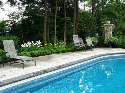 Landscaping around the pool pool landscaping creates backy flickr for Best plants around swimming pool