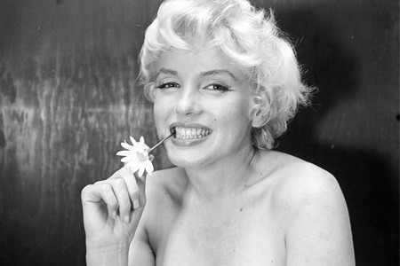 Marilyn monroe w daisy terri daugherty flickr - Marilyn monroe diva ...