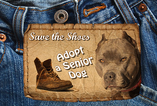 Adopt a Senior Dog Month, November, Save the Shoes | by Beverly & Pack