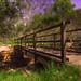 Bridgeway Access