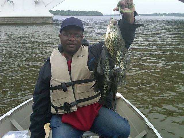 Crappie photo courtesy david faulks maryland fisheries for Md dnr fishing report