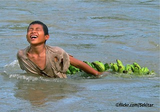 Dragging Bananas accross the river near Wolowaru, Flores Indonesia | by Sekitar