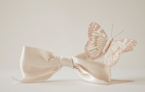 Bow Tie And Butterfly | by JoyHey