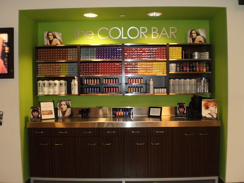 Phase I Color Bar Where We Celebrate Color Cactus