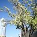 SXSW 2010 - Wednesday
