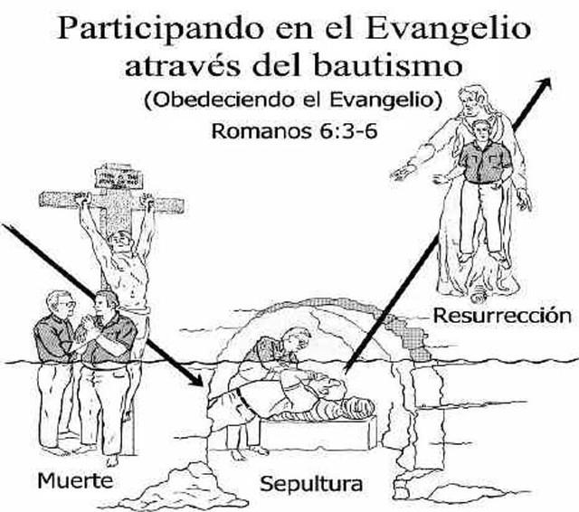 semejanza entre la muerte sepultura y resurrecci u00f3n de cris