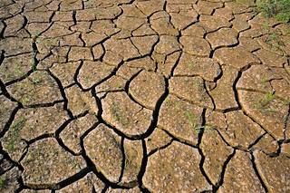 cracked earth | by CIAT International Center for Tropical Agriculture