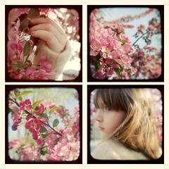 Springtime in Ttv Land | by Mandy Bryant (The Light Fantastic)