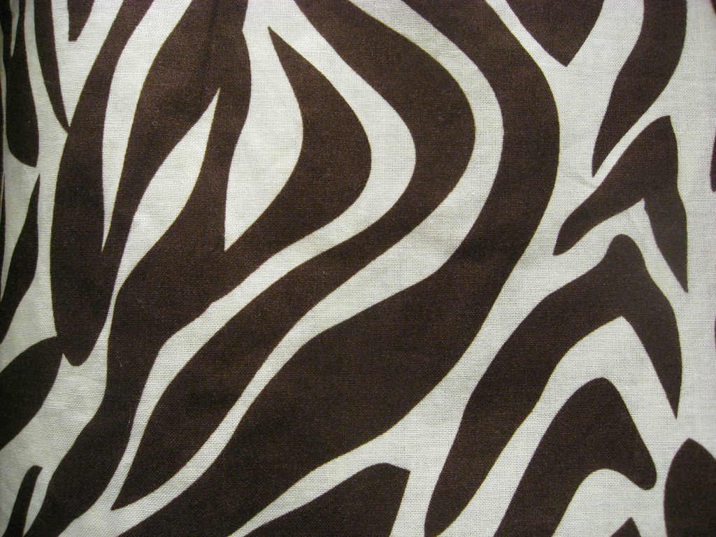 Zebra Pattern Best Decoration