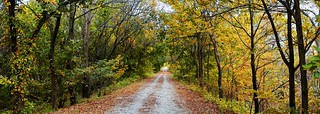 Autumn on the MoPac trail (3) | by J. Paxon Reyes