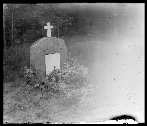 Tombstone in Cemetery | by uwdigitalcollections