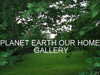 PLANET EARTH OUR HOME group gallery. Showcase galleries on display in PLANET EARTH NEWSLETTER. New Updates ck. them out. | by THATS RIGHT