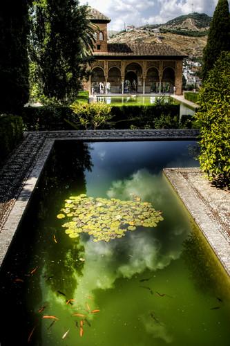Partal gardens alhambra granada jardines del partal for Jardines nazaries