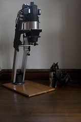 lexi and the enlarger