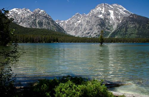 Peaks over Leigh Lake, Grand Teton National Park, Wyoming. Photo courtesy of Allen Harris