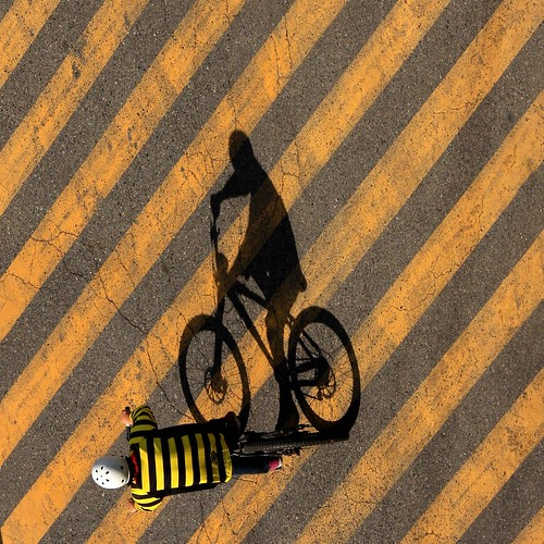 a bee-autiful ride | by Jawdoc