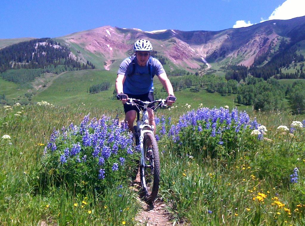 Creek Mountain Colorado Com Mountain Biking Deer Creek