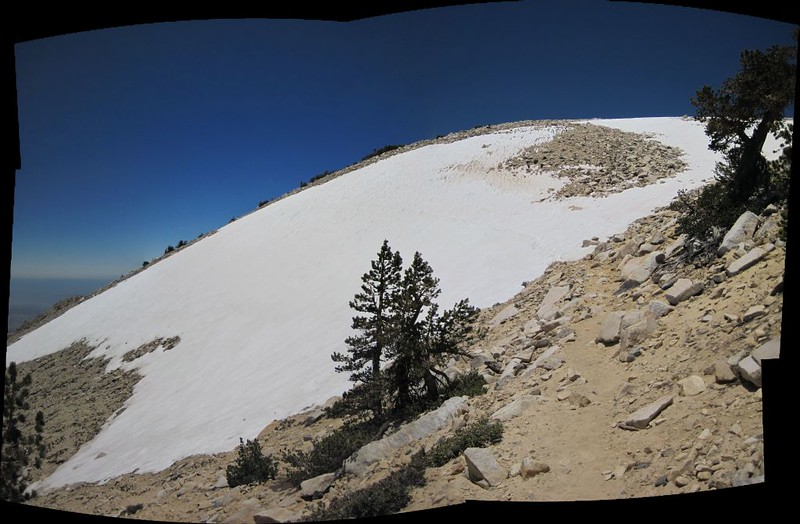 The huge snow patch south of the San Gorgonio summit. The Sky High Trail goes directly across it.