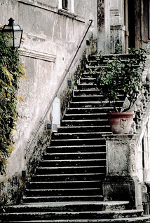 Villa d'Este Stairs | by rosewoodoil