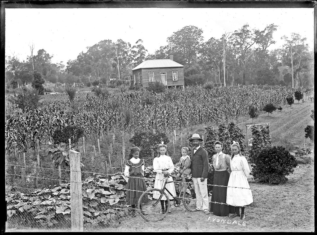 pocock house avondale cooranbong nsw 5 january 1900