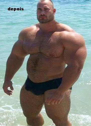 Free gay bear videos