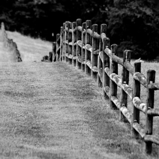 A Little Fence-Keh For Friday | by raisinsawdust - (aka: tennphoto)