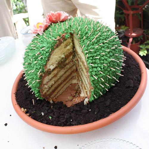 Cactus Cake Cactus Cake For My Boyfriends Parents