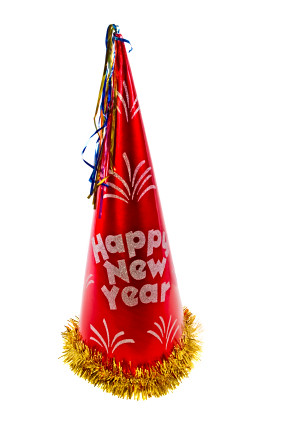 New Year Party Hat Png Best  Animals In Party Hats Png
