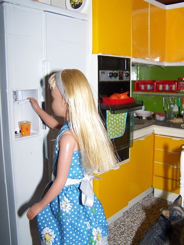 Getting some Ice for her Orange Juice.. Vintage Skipper in Vintage Sindy Kitchen. | by Rieckie