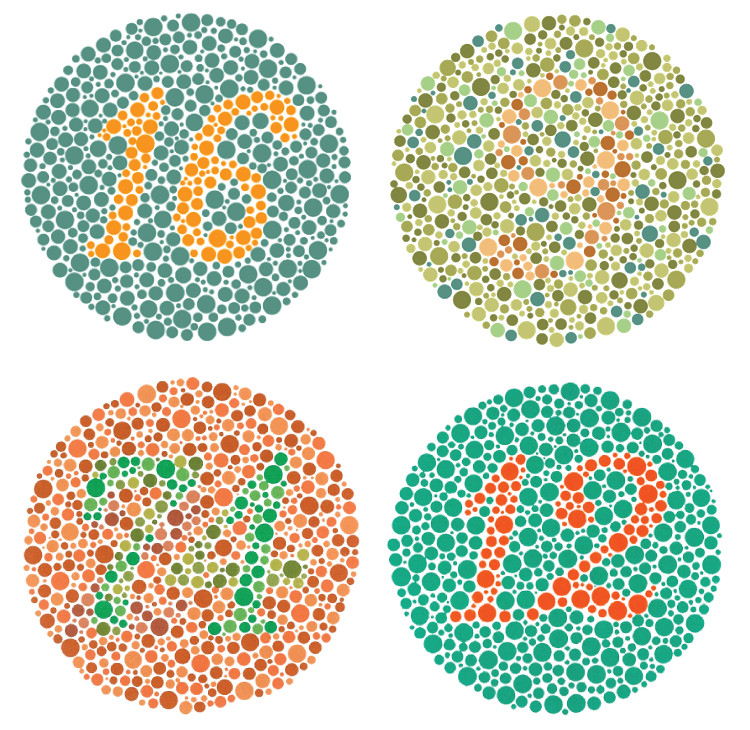 Color Blindness Test Blogged At Www Toodleson Blogspot