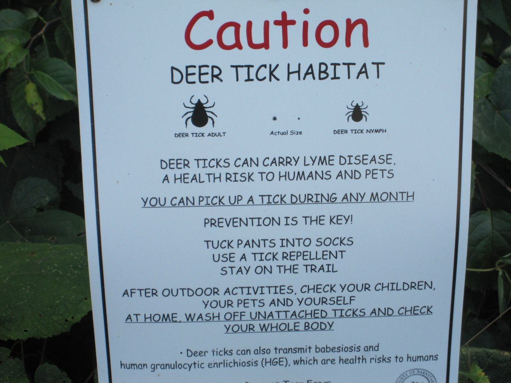 Caution: Deer Tick Habitat > Wellfleet Bay Wildlife Sanctu… | Flickr