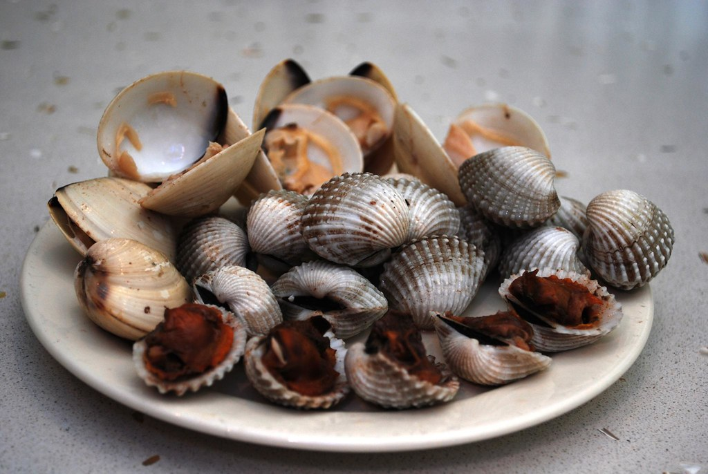 Cooked - Blood Cockles and Clams